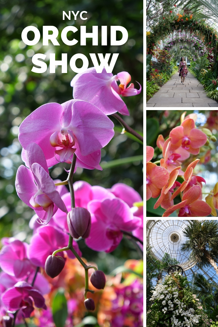 New York Botanical Garden Orchid Show Nyc The Travel Women