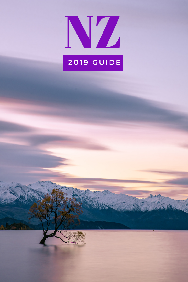 2019 NZ Guide Wanaka tree sunset long exposure