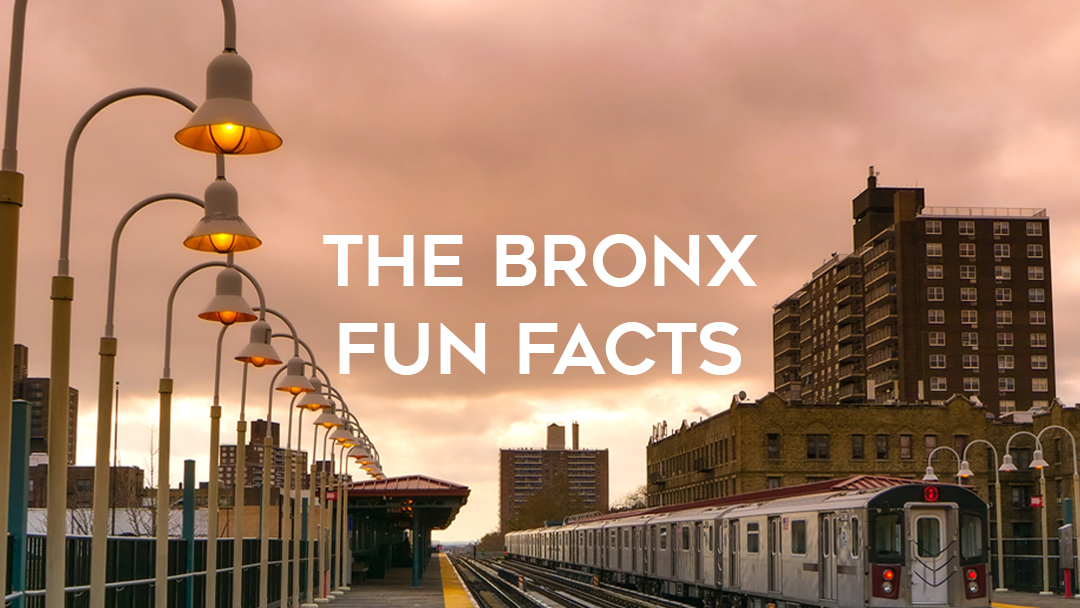 The Bronx Fun Facts