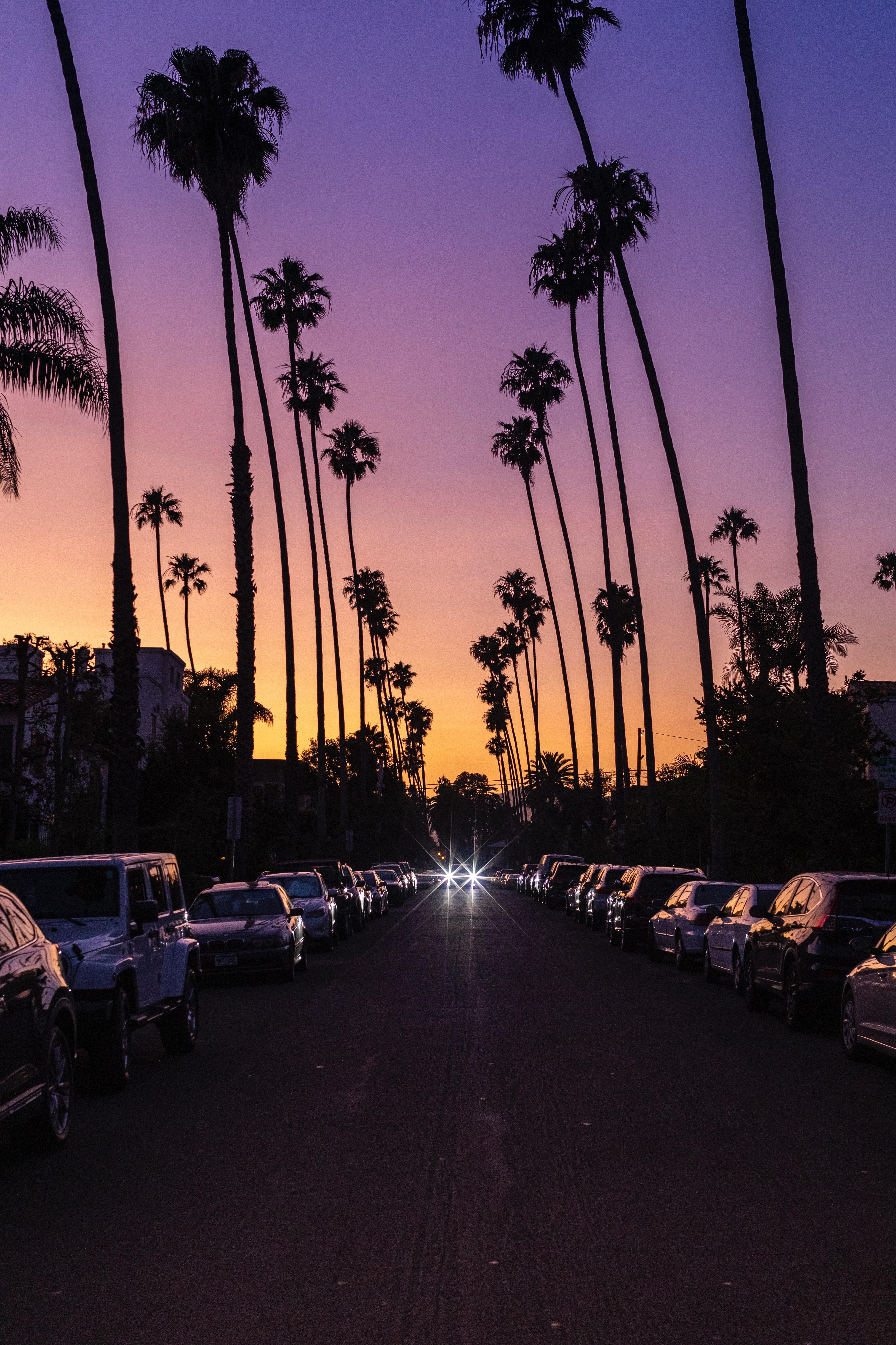 19. Santa Monica, California daniel-schludi-t6JpiIWLLp8-unsplash