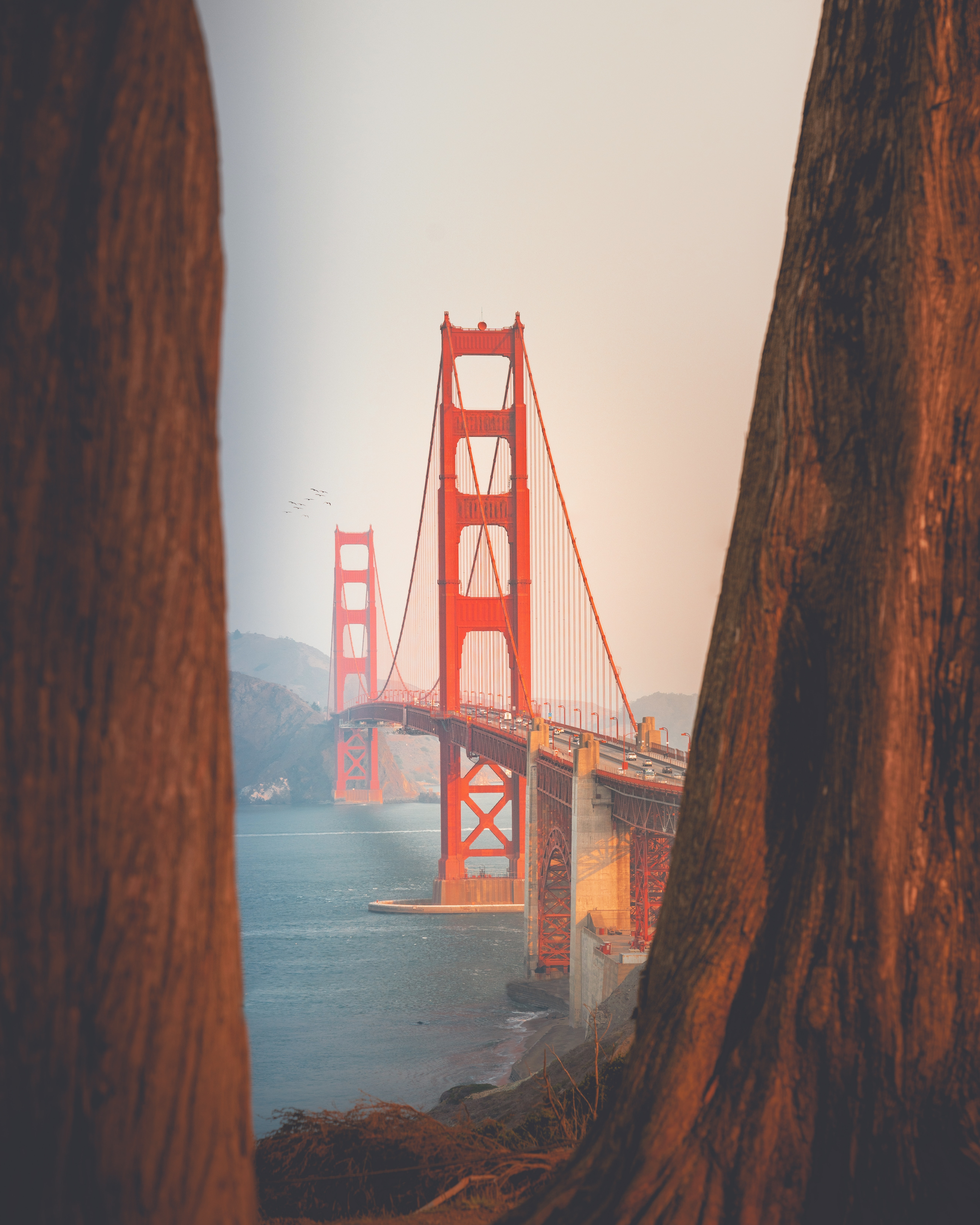 1. San Diego, California montylov-ktZZiHb-GoI-unsplash