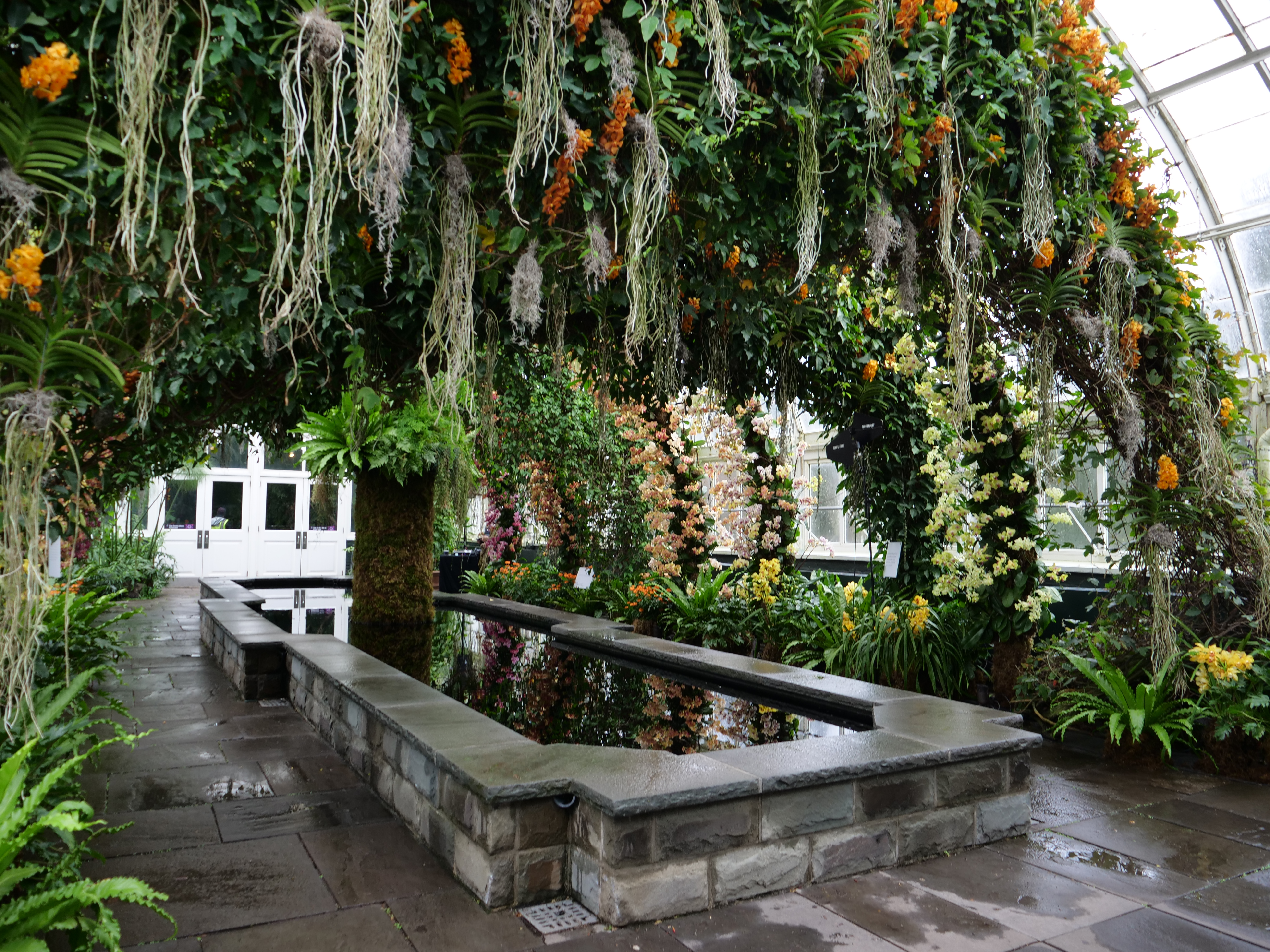 NYBG Orchid Show NYC 2020