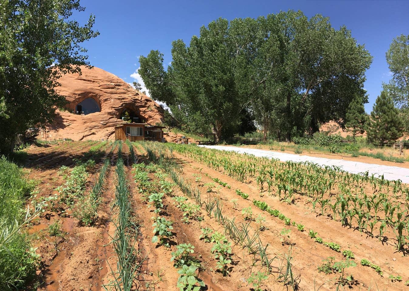 Most Unique USA Airbnbs Navajo sandstone home cave Boulder Utah garden